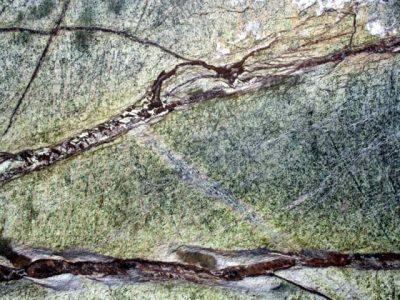 Granito Rain Forest Green