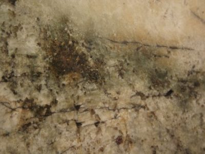 Granito Persa Avorio
